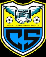 Carlos Stein - Logo