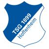 Hoffenheim II - Logo