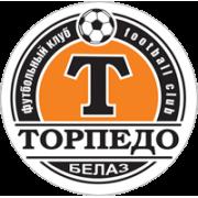 Torpedo Zhodino Res. - Logo
