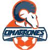 Cimarrones de Sonora II - Logo