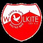 Wolkite Ketema - Logo