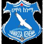 Awassa Kenema - Logo