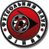 Dinaz Vyshhorod - Logo