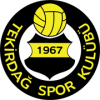 Tekirdagspor - Logo