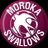 Moroka Swallows - Logo
