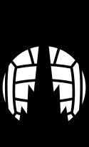 Falkirk FC - Logo