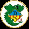 CE Banyoles - Logo