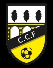 Casalarreina CF - Logo