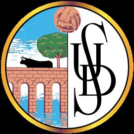 Salamanca CF - Logo