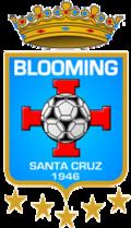 Blooming - Logo