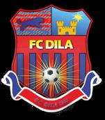 Dila Gori - Logo