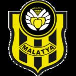 Yeni Malatyaspor - Logo