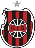 Brasil de Pelotas - Logo