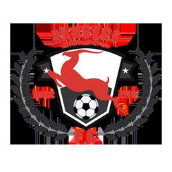 Enugu Rangers - Logo