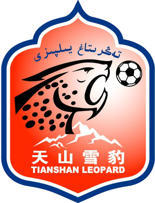 Xinjiang Tianshan - Logo