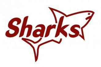 Kariobangi Sharks - Logo