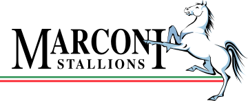 Marconi Stallions - Logo