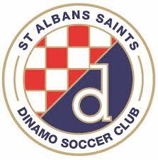 St Albans Saints - Logo