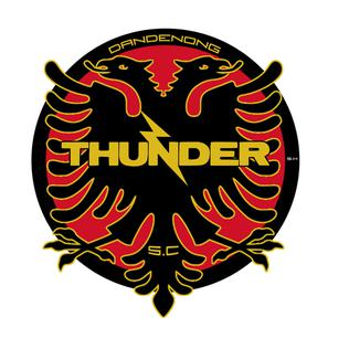 Thunder SC - Logo