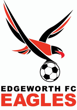 Edgeworth Eagles - Logo