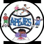 APEJES - Logo