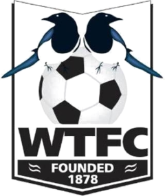 Wimborne Town - Logo