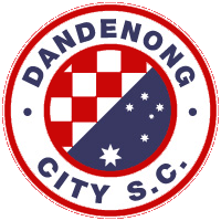 Dandenong City - Logo