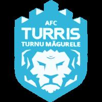 Turris-Oltul - Logo